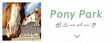 ポニーパーク